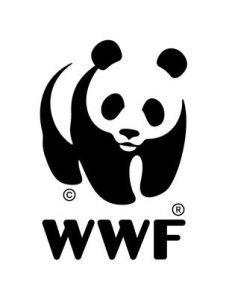 Gambar panda WWF di KERAJINAN KACA vandel
